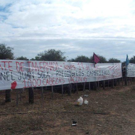 Remate Ganadero y Capacitación en Morillo