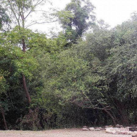 Ubicada en Vaqueros, la provincia cuenta con una nueva Reserva Natural