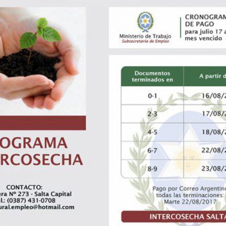 Comenzó el pago a beneficiarios del programa Intercosecha