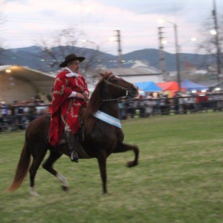 Los Caballos Peruanos de Paso cierran el 2018 en la Rural Salteña