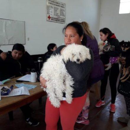 El programa Tu Casa Tu Perro realizó atención gratuita en Rosario de la Frontera