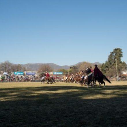 113° Concurso Provincial: Los Caballos Peruanos de Paso cierran el año en la Rural Salteña