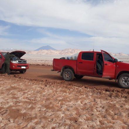 Incautan 190 kilos de marihuana en la frontera con Chile