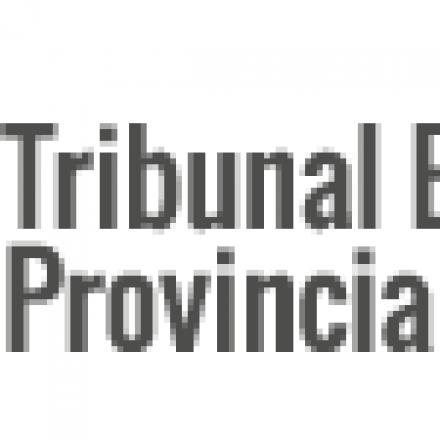 """""""Frente de Todos""""; """"Frente Olmedo Gobernador"""";  """"Frente de Izquierda y de Trabajadores – Unidad"""" y """"Frente Sáenz Gobernador"""", los cuatro frentes que se registraron para las elecciones en Salta"""
