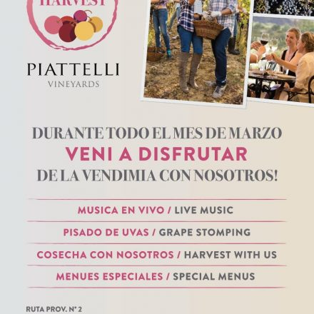Bodega Piattelli te invita al «Enjoy the Harvest»