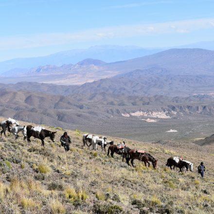 Encuentran y retiran de material contaminante del Cerro Malcante