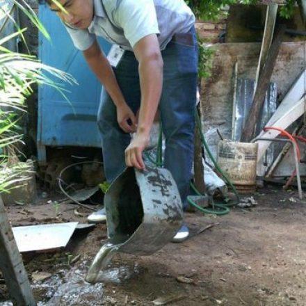 Desde octubre no hubo casos de enfermedades transmitidas por mosquitos