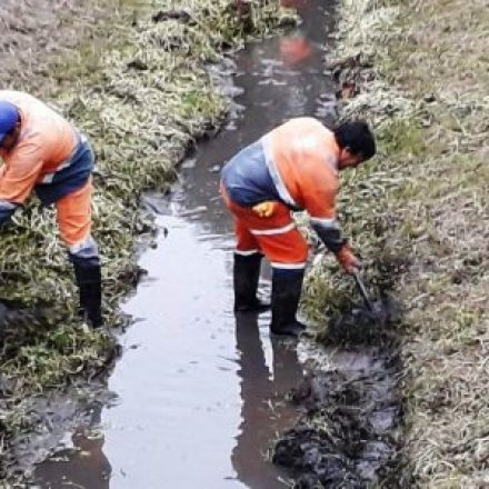 Limpieza integral del Canal Vidt