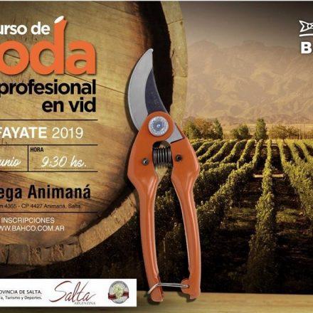 El 8 de junio se realizará la cuarta edición del Concurso de Poda Profesional de Vid