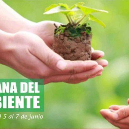 Más de mil niños prometerán protección y respeto al ambiente