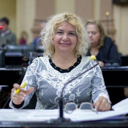 Salta: Se aprobó en Diputados la Ley de regulación de la actividad del Acompañante Terapéutico