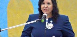 En Cerrillos la «Pirotecnia Sonora Cero» ya es ley