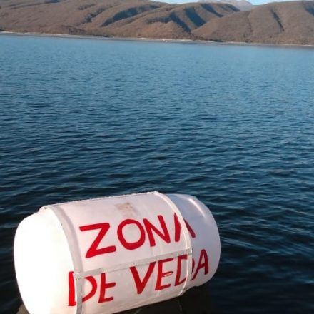 Rige la veda de pesca en Las Lomitas, Campo Alegre y parte del Cabra Corral