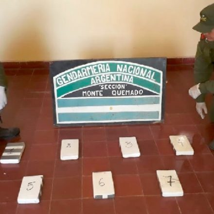 Detienen a 6 pasajeros que transportaban cocaína adosada al cuerpo