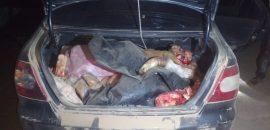 Decomisan más de 200 kilos de carne que eran transportados por tres personas