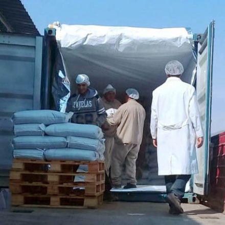 La primera exportación de chía argentina a India sale desde Salta