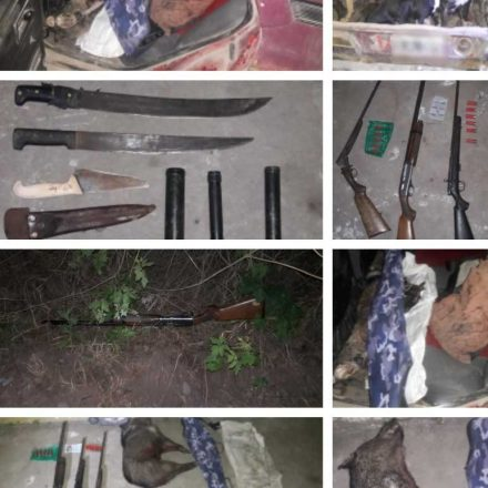 Lucha contra la caza furtiva: incautan armas de fuego