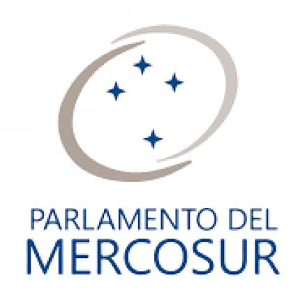 El Parlasur rechazó ayer el Golpe  Cívico-Militar en curso en Bolivia