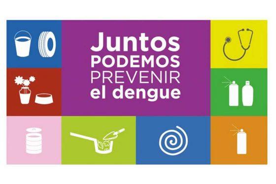 Recomiendan reforzar la prevención de enfermedades transmitidas por mosquitos