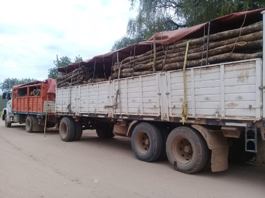 Deforestación: en El Quebrachal y Morillo secuestran productos forestales