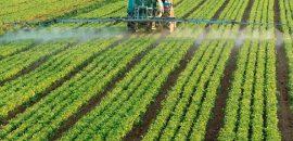 Por una contravencion contra el ecosistema por el uso de agroquímicos solicitan la clausura de un predio urbano