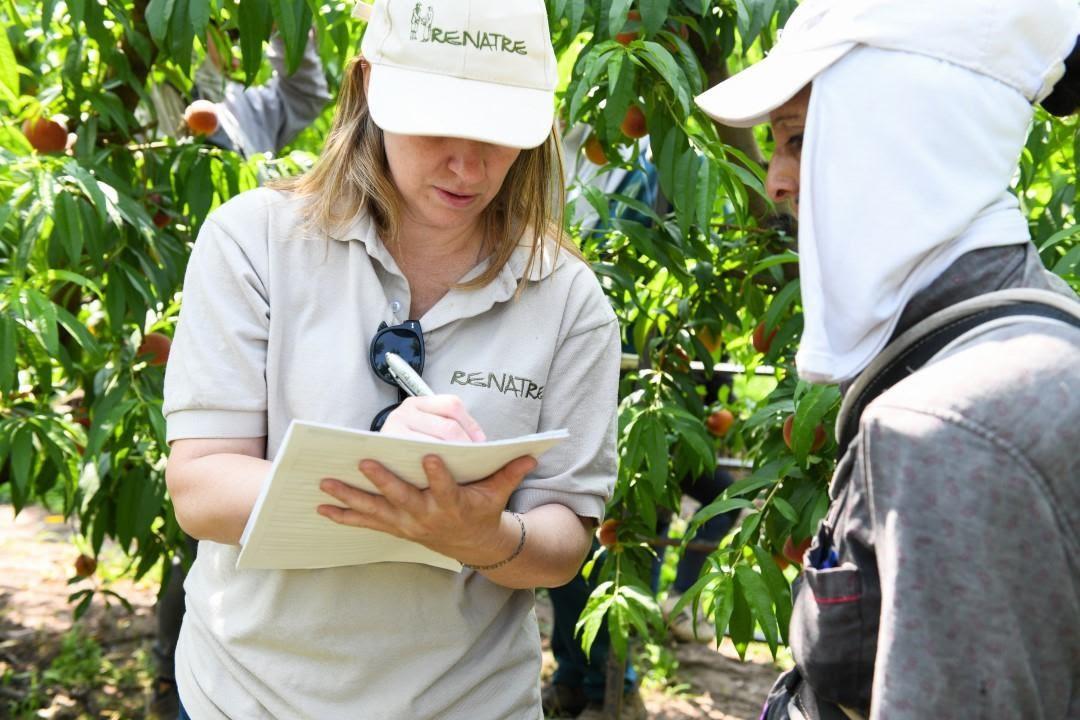 El RENATRE detectó 12.994 trabajadores no registrados durante las fiscalizaciones del 2019