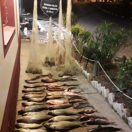 La pesca furtiva no se detiene, multa para cuatro hombres