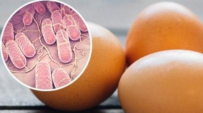 Brindan recomendaciones para prevenir salmonelosis (salmonella)