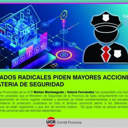 Diputados radicales piden mayores acciones en materia de Seguridad