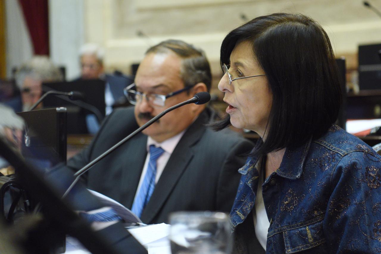 """Nora Giménez: """"Esta ley va a ser de impacto para la producción local y la agricultura familiar"""""""