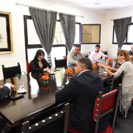 Diputados Nacionales por Salta brindaron apoyo unánime a la campaña del Gobierno para enfrentar el coronavirus