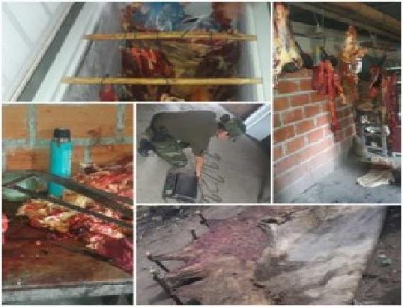 En Rosario del Frontera: vendían carne de animal vacuno robado
