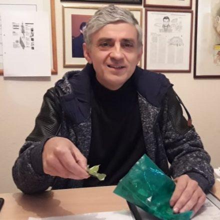 Diputado jujeño presentó proyecto de ley para legalizar el cultivo y comercialización de la hoja de coca en Salta y Jujuy
