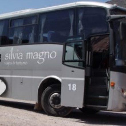 Imputan a la empresaria Silvia Magno por realizar viajes sin autorización durante el aislamiento