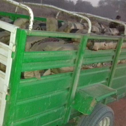 Depredación furtiva del medio ambiente: infraccionan a dos hombres que transportaban carbón y quirquinchos eviscerados