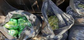 En J.V. Gonzalez secuestran 52 kilos de hojas de coca