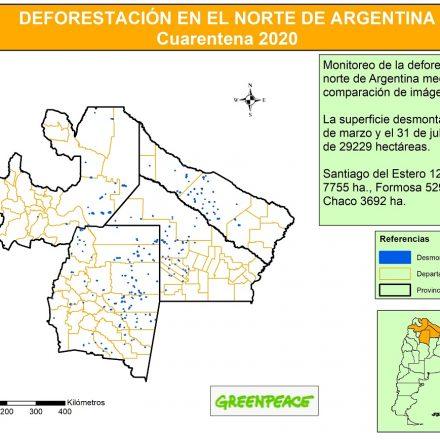 Greenpeace advierte que el acuerdo con China generará más deforestación en el norte del país
