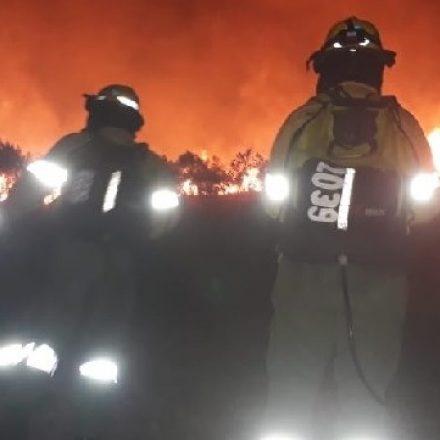 Varias dotaciones de bomberos para sofocar un incendio forestal en Vaqueros