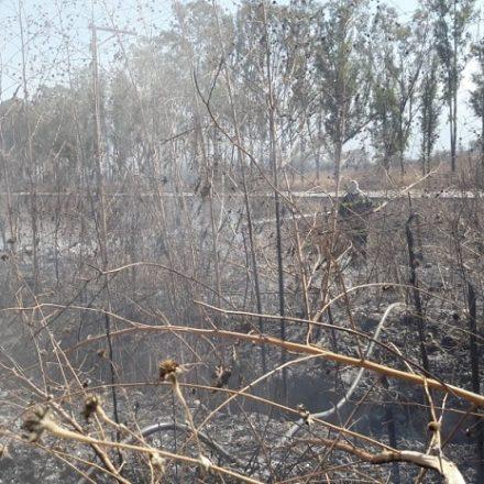 Sofocan un incendio de pastizales en La Silleta