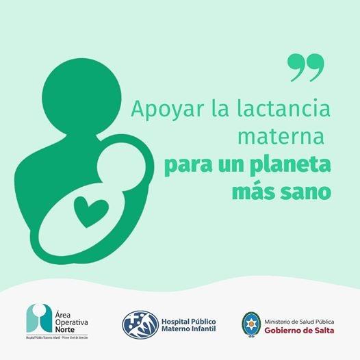 Promoviendo la lactancia materna: por la redes sociales dictarán un taller sobre alimentación en el primer año de vida