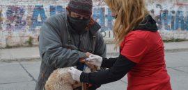 Capital: suspenden las jornadas de vacunación antirrábica previstas para ésta semana