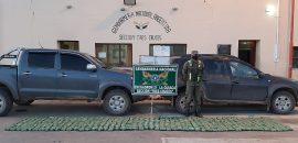 Secuestraron 100 kilos de hojas de coca que eran transportadas en dos camionetas