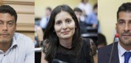 Diputados de la UCR presentaron el Proyecto de Ley de Ficha Limpia para candidatos políticos